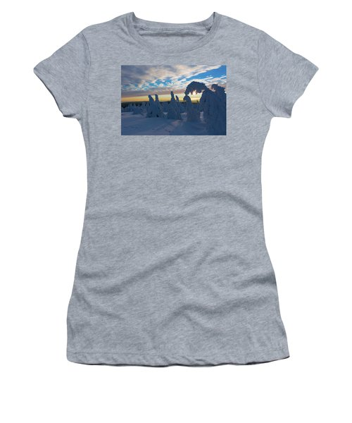 Touched From The Winter Sun Women's T-Shirt (Junior Cut) by Andreas Levi