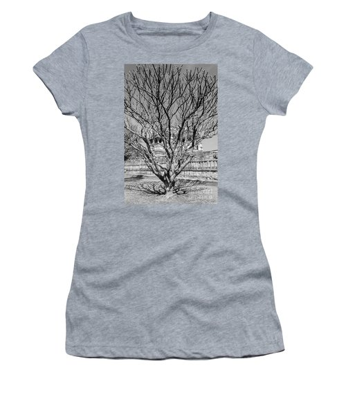 Tree And Temple Women's T-Shirt