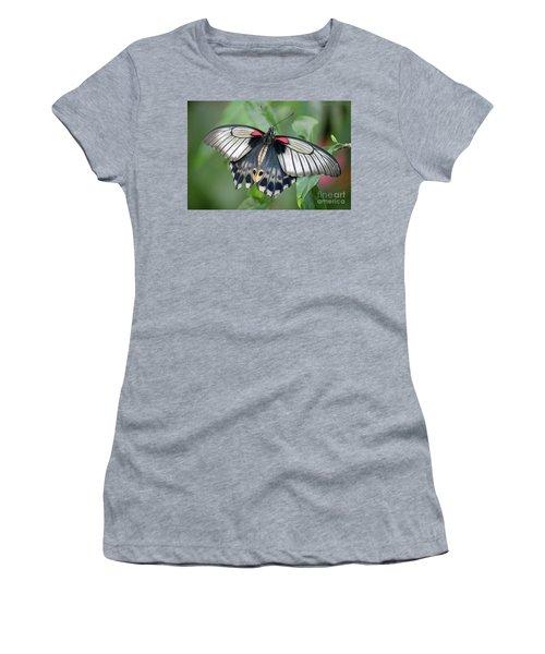 Tropical Butterfly Women's T-Shirt