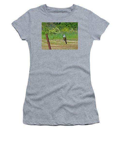 Tropical Kingbird Women's T-Shirt
