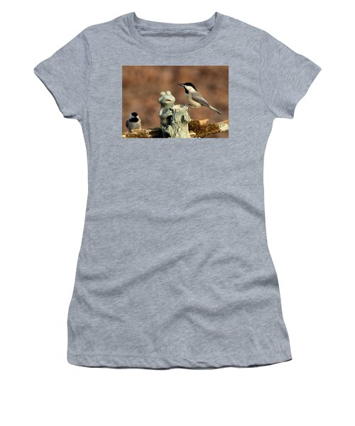 Two Black-capped Chickadees And Frog Women's T-Shirt (Junior Cut) by Sheila Brown