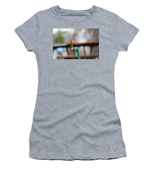 Vermilion Flycatcher Two Women's T-Shirt