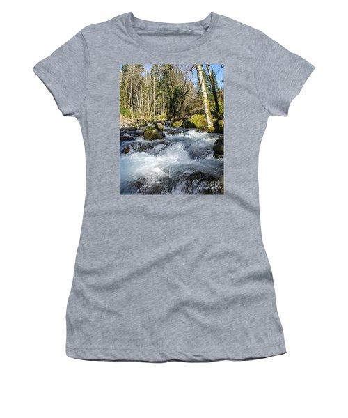 Views Of A Stream, IIi Women's T-Shirt (Junior Cut) by Chuck Flewelling