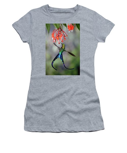 Violet-tailed Sylph Feeding Women's T-Shirt
