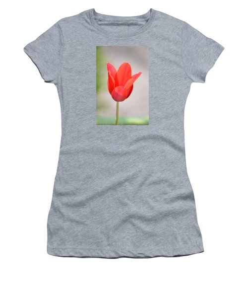 Warm Pink Tulip Women's T-Shirt (Athletic Fit)