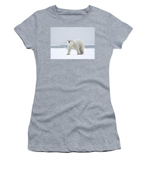 Watchful In The Arctic Women's T-Shirt