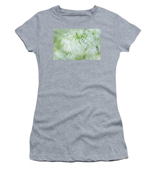 White Fringetree Women's T-Shirt