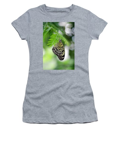 White Tree Nymph Butterfly 2 Women's T-Shirt (Junior Cut) by Marie Hicks