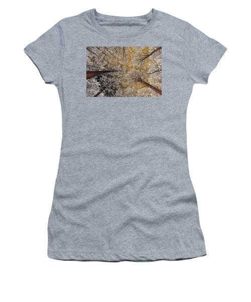 Women's T-Shirt (Junior Cut) featuring the photograph Whiteout by Tony Beck