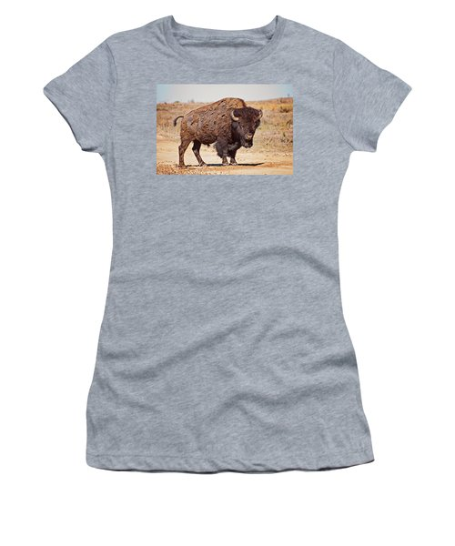 Wild Bison Women's T-Shirt (Athletic Fit)
