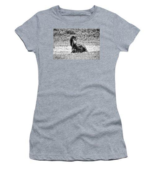 Wild Horses Bw3 Women's T-Shirt