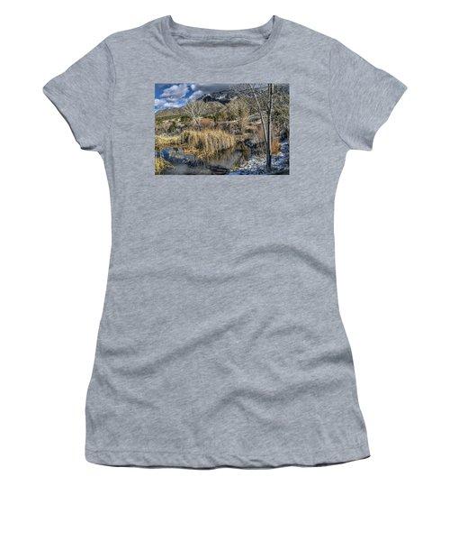 Wildlife Water Hole Women's T-Shirt (Junior Cut) by Alan Toepfer