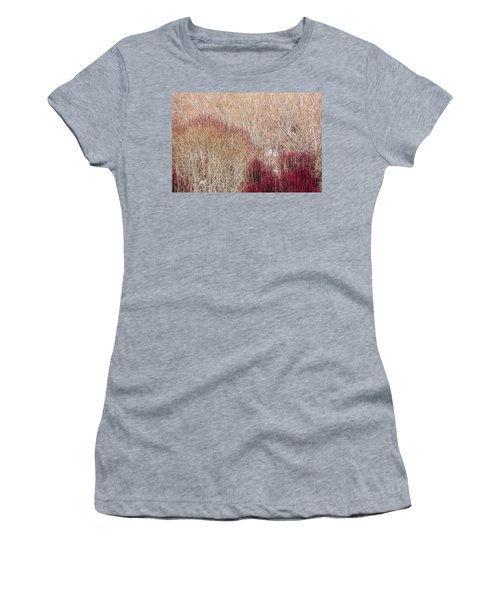 Willows In Winter Women's T-Shirt