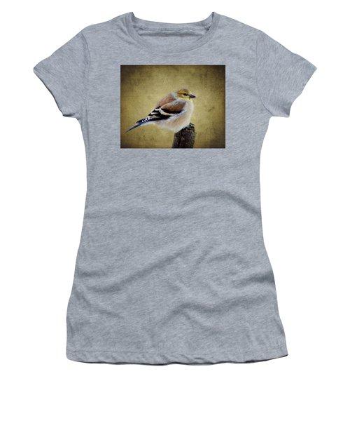 Winter Goldfinch Women's T-Shirt