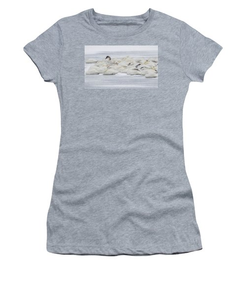 Women's T-Shirt (Junior Cut) featuring the photograph Winter by Kelly Marquardt