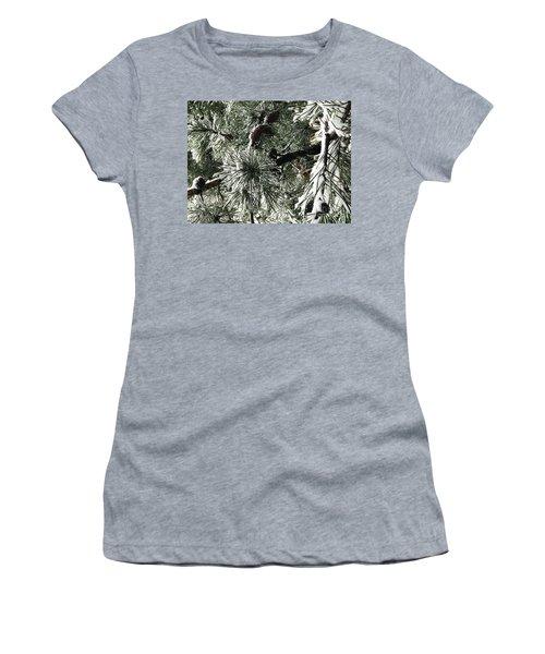 Winter Land  Women's T-Shirt