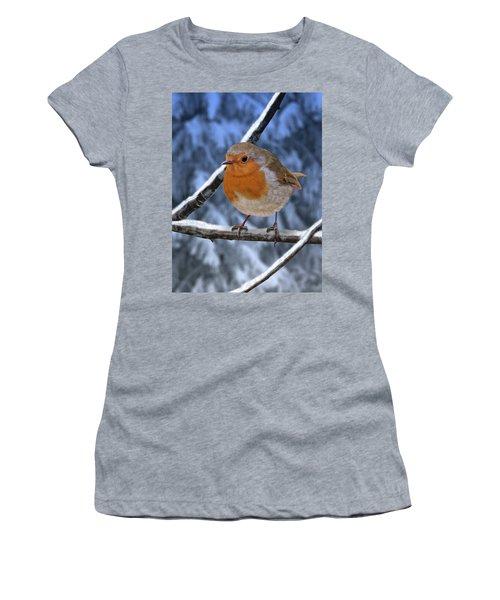 Winter Robin Women's T-Shirt