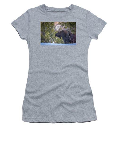 Winter's Arrival  Women's T-Shirt