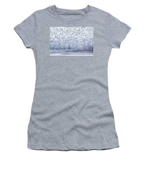 World Of Birds Women's T-Shirt (Junior Cut)