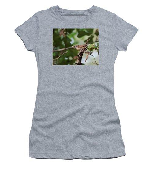 Wren Women's T-Shirt