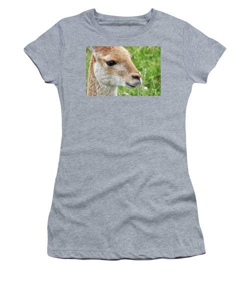 You Can Call Me Al Women's T-Shirt
