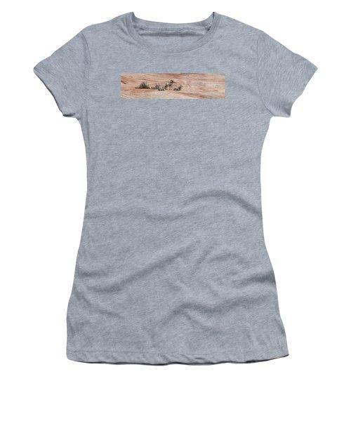 Zion Family Women's T-Shirt