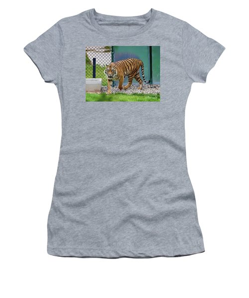 Women's T-Shirt (Athletic Fit) featuring the photograph Zoo Tiger Staring At Me by Merton Allen