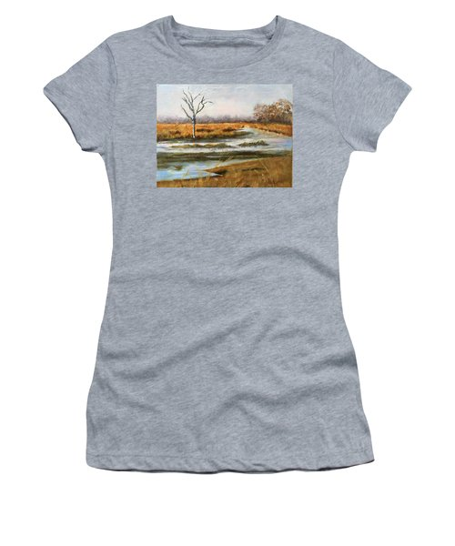 Early Spring On The Marsh Women's T-Shirt