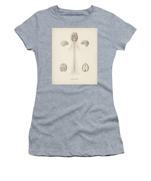 Human S Brain Illustrated By Charles Dessalines  D Orbigny  1806 1876  Women's T-Shirt