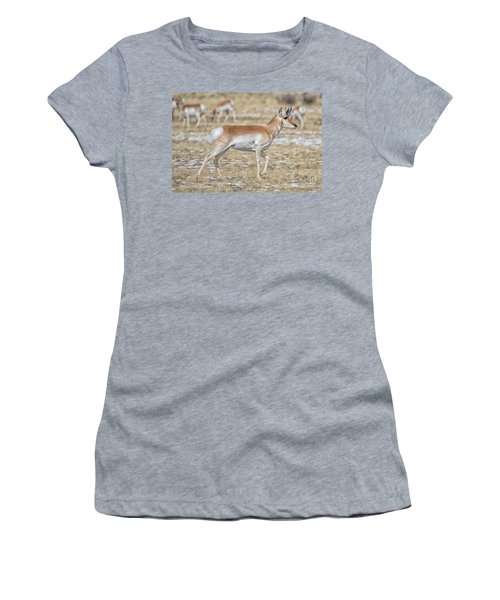 Women's T-Shirt featuring the photograph Pronghorn by Bitter Buffalo Photography