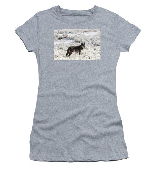 W23 Women's T-Shirt