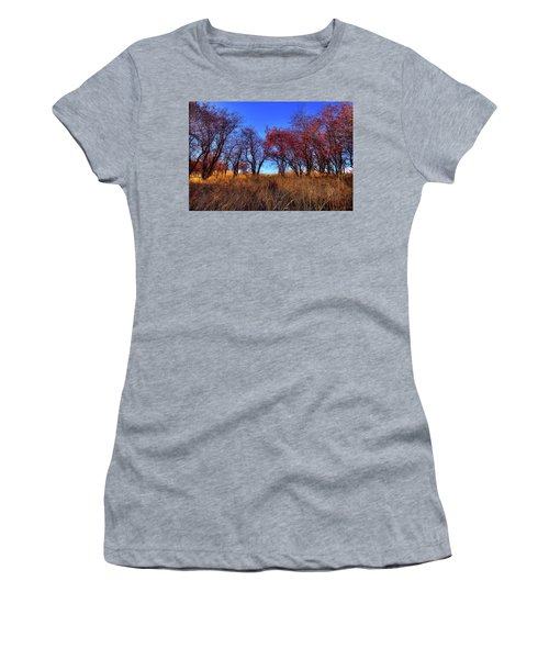 Women's T-Shirt featuring the photograph Autumn Light by David Patterson