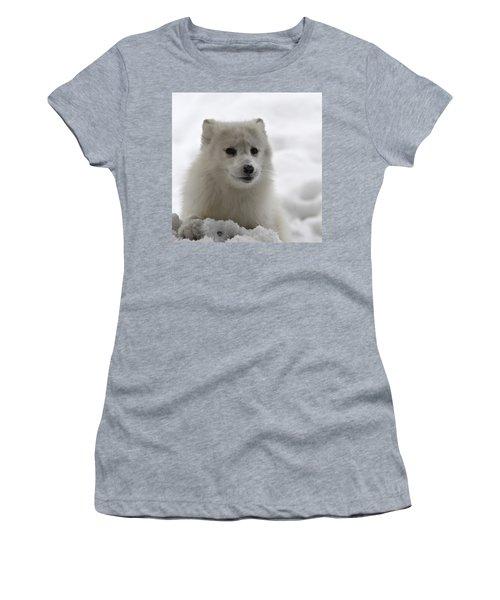 Artic Fox Women's T-Shirt