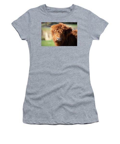 Women's T-Shirt featuring the photograph Highland Cow On The Farm by Rob D Imagery