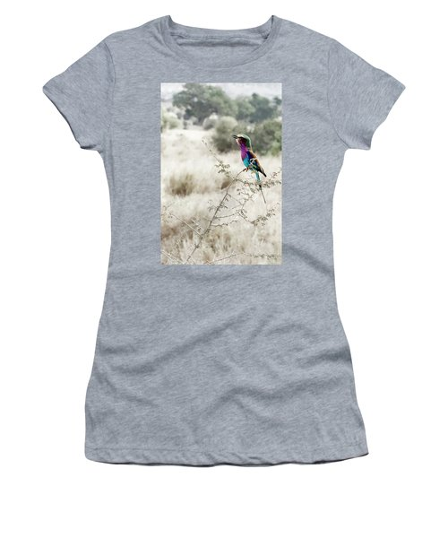 A Lilac Breasted Roller Sings, Desaturated Women's T-Shirt