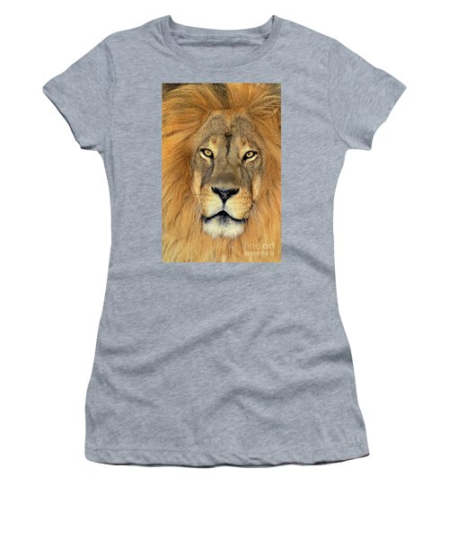 African Lion Portrait Wildlife Rescue Women's T-Shirt