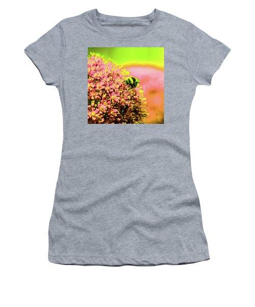 Allium With Bee 1 Women's T-Shirt