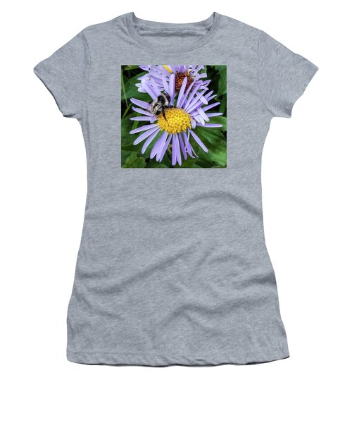 Women's T-Shirt (Athletic Fit) featuring the photograph Alpine Aster At Glacier National Park by Lon Dittrick