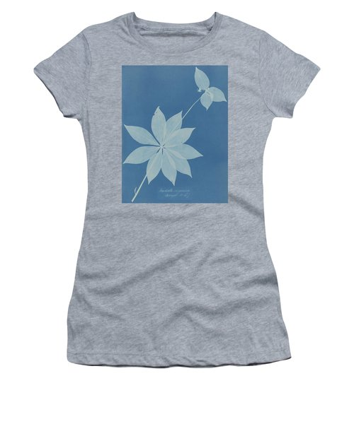 Anna Atkins 1799  1871  Mediola Arginica  Bangor  U  S ' Women's T-Shirt