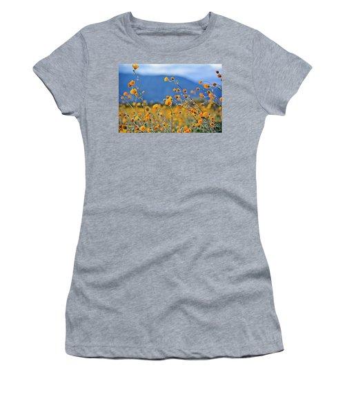 Anza Borrego Wild Desert Sunflowers Women's T-Shirt