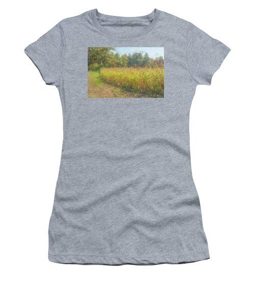 Autumn Field In Sunlight Women's T-Shirt