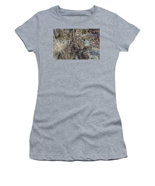 Women's T-Shirt featuring the photograph B53 by Joshua Able's Wildlife