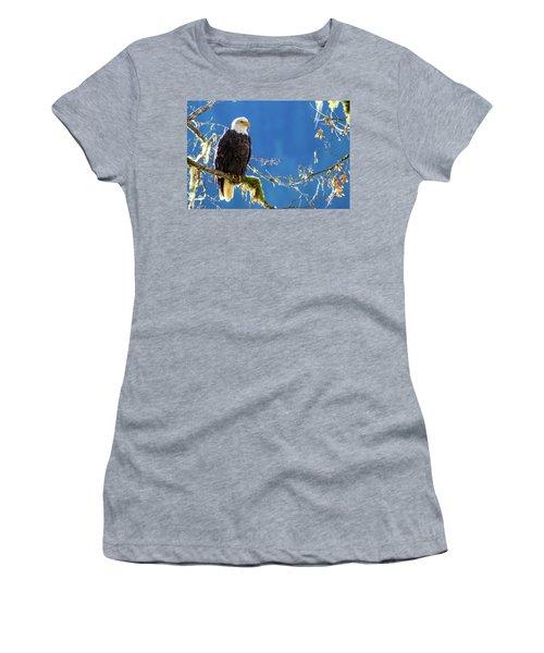 Backlit Bald Eagle In Squamish Women's T-Shirt