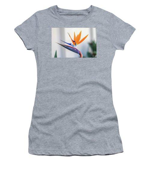 Beauty In Paradise Women's T-Shirt