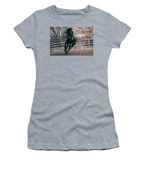 Black Stallion Cantering Women's T-Shirt