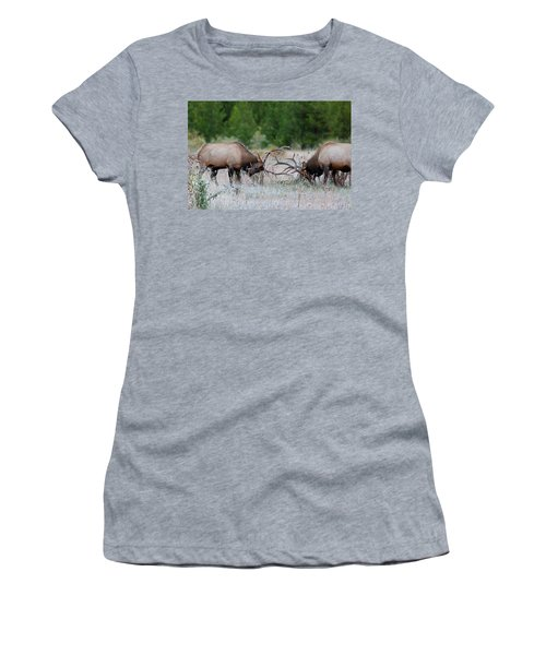 Bull Elk Battle Rocky Mountain National Park Women's T-Shirt