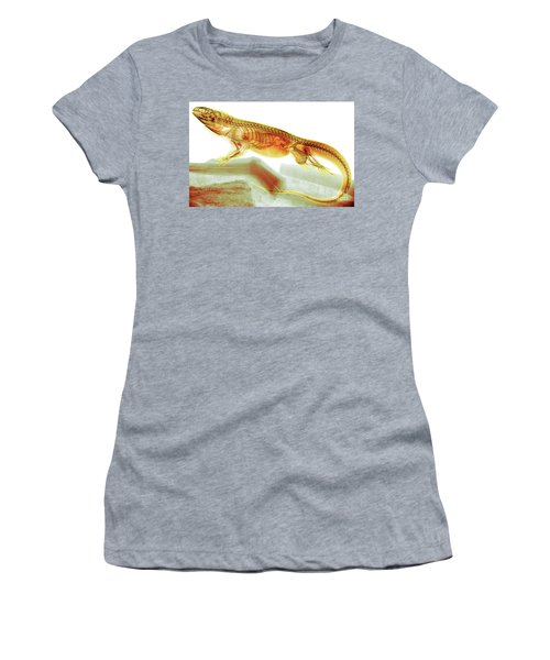 C025/8504 Women's T-Shirt