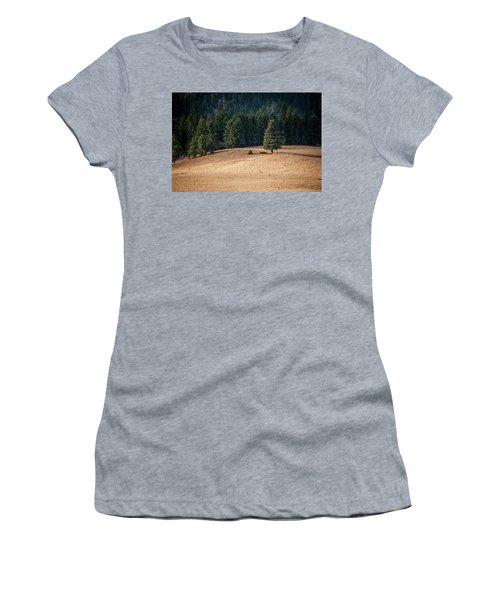 Caldera Edge Women's T-Shirt