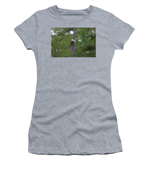 Canada Jay 101305 Women's T-Shirt