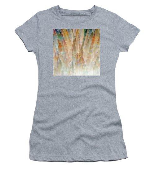 Canyon Falls  Women's T-Shirt